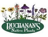 Buchanans VegFest Houston Donor