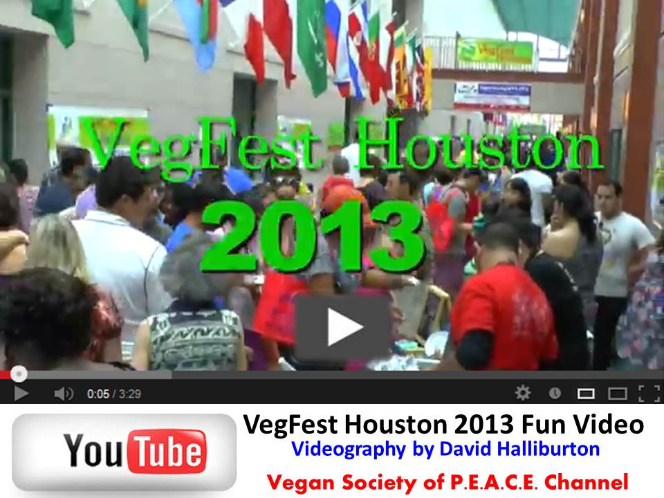 VegFest Houston 2013 Video Recap David Halliburton VSOP