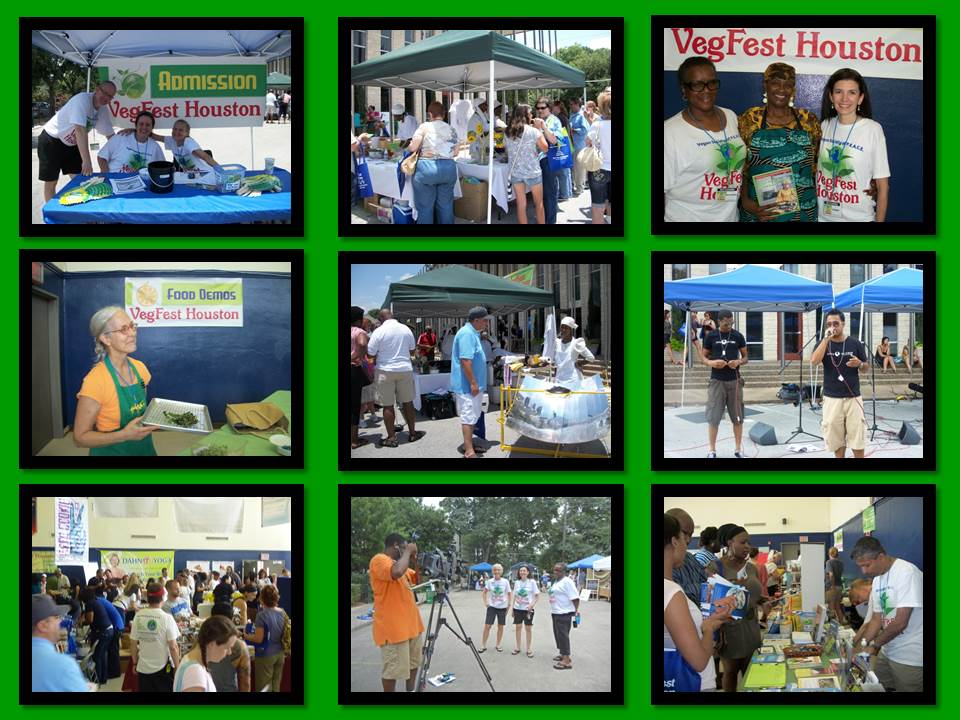 VegFest Houston Collage 3