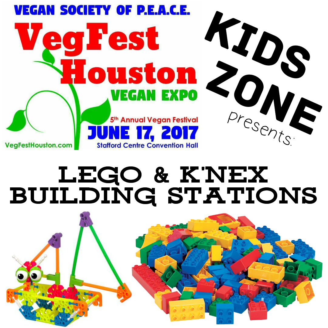 VegFest Houston Kids Zone Lego