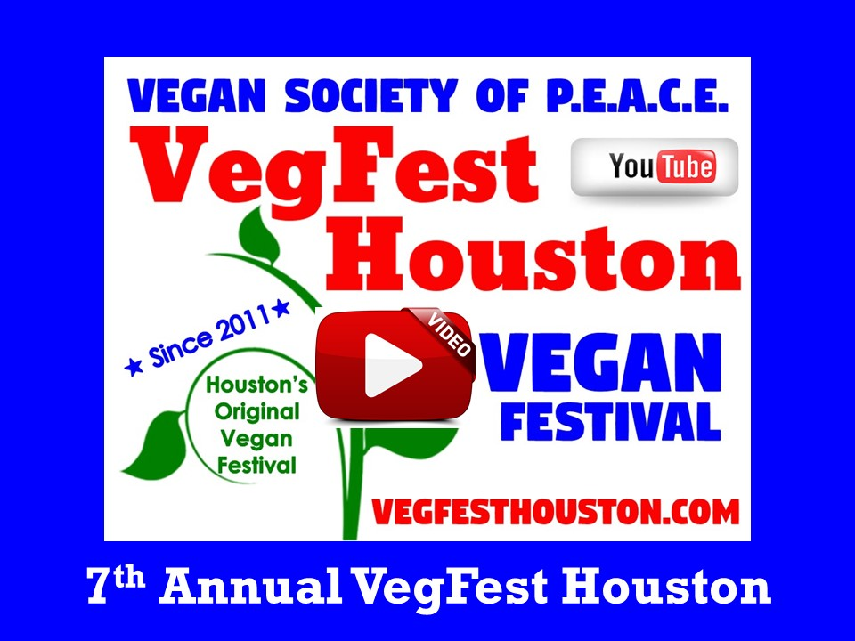 7th Annual VegFest Houston Reveal VSOP